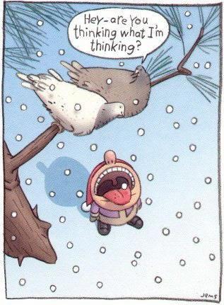 Silly Christmas Jokes.List Of Christmas Jokes Set 1